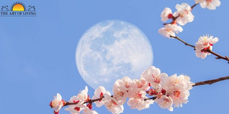 Online Full Moon Meditation tickets