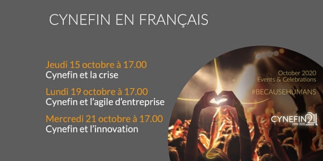 Cynefin et l'innovation tickets