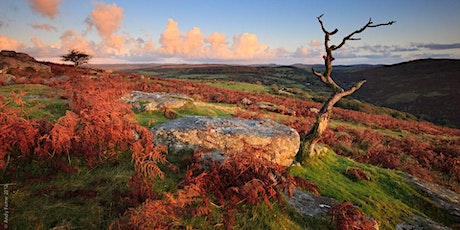 Pi Singles  Autumn Dartmoor Walk tickets