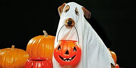Barktober Halloween Costume Party! tickets