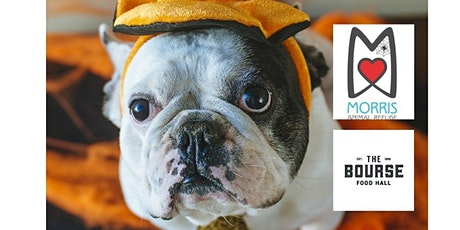 HOWL-o-ween Pet Costume Contest & Fall Fest! tickets