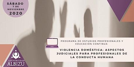 Violencia Doméstica: Aspectos judiciales para Profesionales de la Conducta entradas