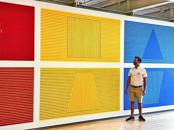 Virtual Closing | ART IN THE AGE OF INFLUENCE: Peter Pincus | Sol LeWitt image