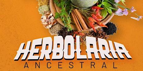 Taller de herbolaria ◙ Medicina ancestral boletos