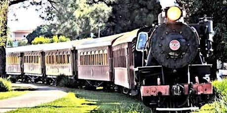 14/11 Passeio de Trem Maria Fumaça Jaguariúna – Campinas e Holambra ingressos