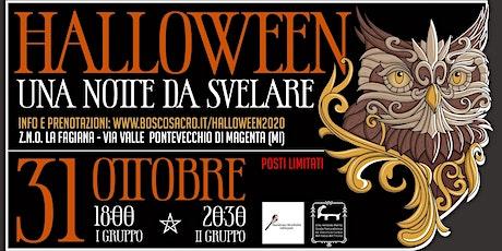 Halloween Una Notte da Svelare biglietti