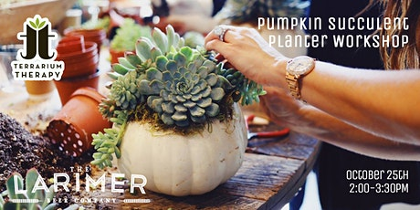 In-Person - Pumpkin Succulent  at The Larimer tickets