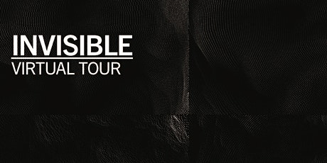 A virtual visit to INVISIBLE at Science Gallery Dublin. tickets