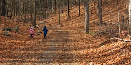 Family Adventure Walk in the Forest 2020 - 1PM to 3PM tickets