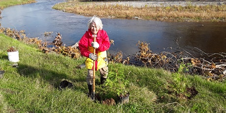 Volunteer tree planting event tickets