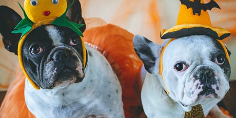 HOWL-O-WEEN Yappy Hour & Costume Contest tickets