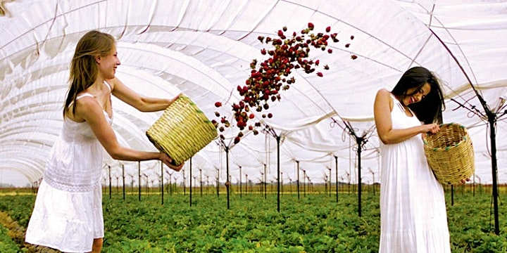 Imagen de Ruta de la fresa