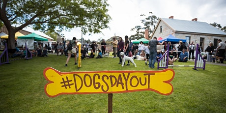 Rescheduled Dog's Day Out and About 2020 tickets