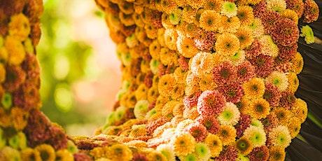 Chrysantenfestival 25 oktober 13u30 tot 17u - Chrysanthemum -  Chrysanthème tickets