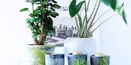 Plantenverzorging, hoe houd je je plant in leven tickets
