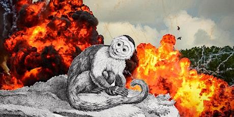 Ebbrezza distruttiva di una scimmia cappuccina-Jacopo Giacomoni CANCELLATO biglietti