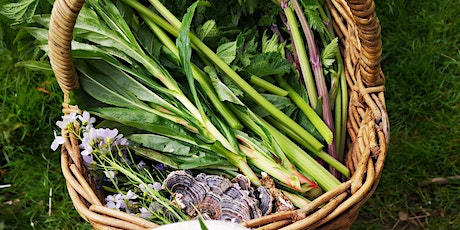 Wild Food Foraging Walk - Brighton (afternoon) tickets