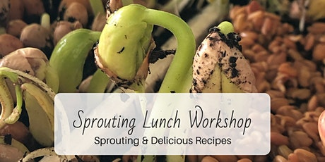 Sprouting Workshop & Lunch: Healthy Foods at Home tickets