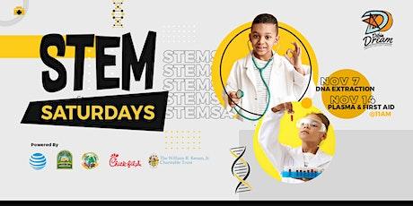 Virtual STEM Saturdays Nov (7th & 14th) tickets