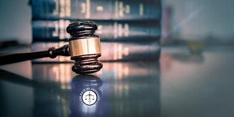 El juicio de daños y perjuicios entradas