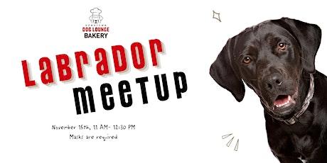 Labrador  Meetup tickets