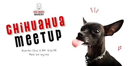 Chihuahua  Meetup tickets
