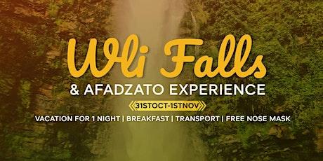 Experience Wli Falls and Afadzato tickets