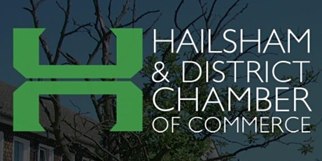 Hailsham & District Chamber of Commerce Networking Zoom Meeting tickets