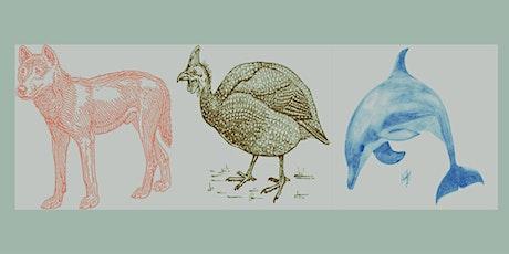 Animal Stories of Semaphore and Lefevre Peninsula tickets