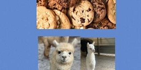 Cookies and Alpacas tickets