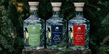 GINTONICA GINORMOUS GIN TASTING | BIG TREE DISTILLERY tickets