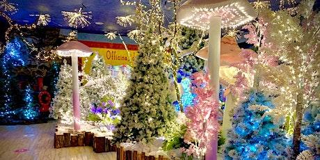 Ingresso Gratuito, Animazione, Attività, Shopping nel Regno di Babbo Natale