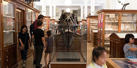 Welcome back to the Sedgwick Museum - sensory disability friendly opening tickets