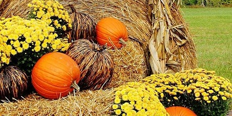 Daytime Pumpkin Patch Reservations tickets