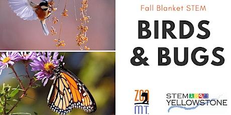 Fall Blanket STEM: Birds & Bugs tickets