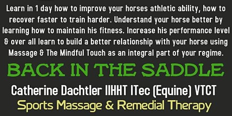 Learn To Massage Your Horse at Home 1 Day Course tickets