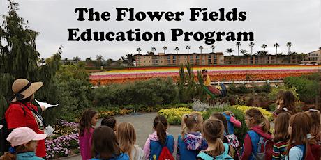 The Flower Fields Educational Field Trips tickets