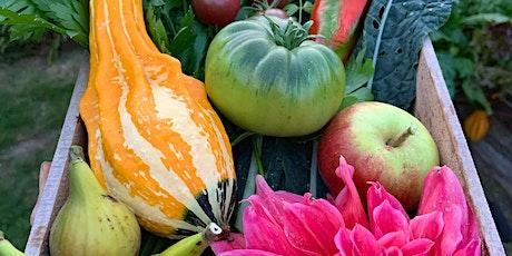 Autumn Sowing Workshop in the Kitchen Garden tickets