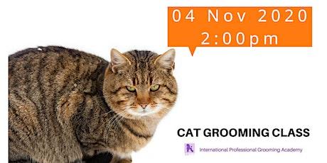 貓專業美容技巧及專業美容工具運用教學(只限本院校學員參加) tickets