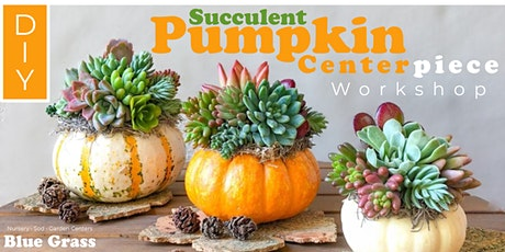 Succulent Pumpkin Centerpiece tickets