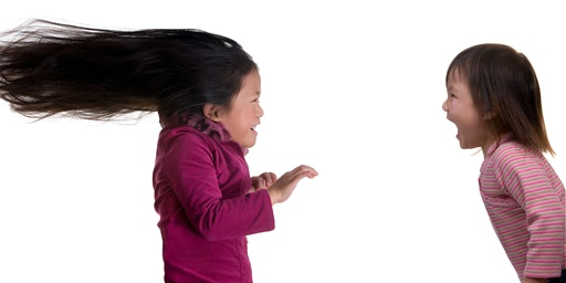 Temperament Tools: Working with Feisty and Tenacious Temperament Traits
