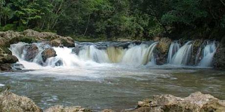 07/11 Trilha da Cachoeira dos Manacás ingressos