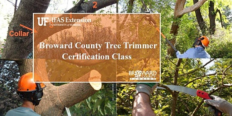 Broward County ADVANCED SPANISH Tree Trimmer Certification Class entradas