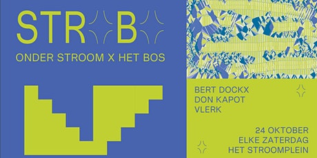 Bert Dockx + Don Kapot + Vlerk tickets