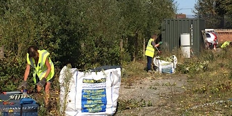 London Wildlife Trust workday Walthamstow Wetlands, Sat 31st October 2020 tickets
