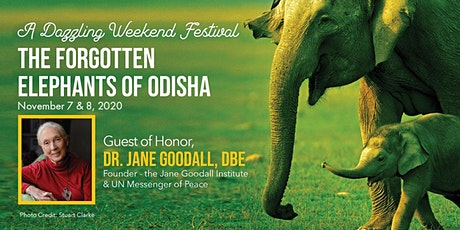 A Virtual Weekend Festival for The Forgotten Elephants of Odisha tickets