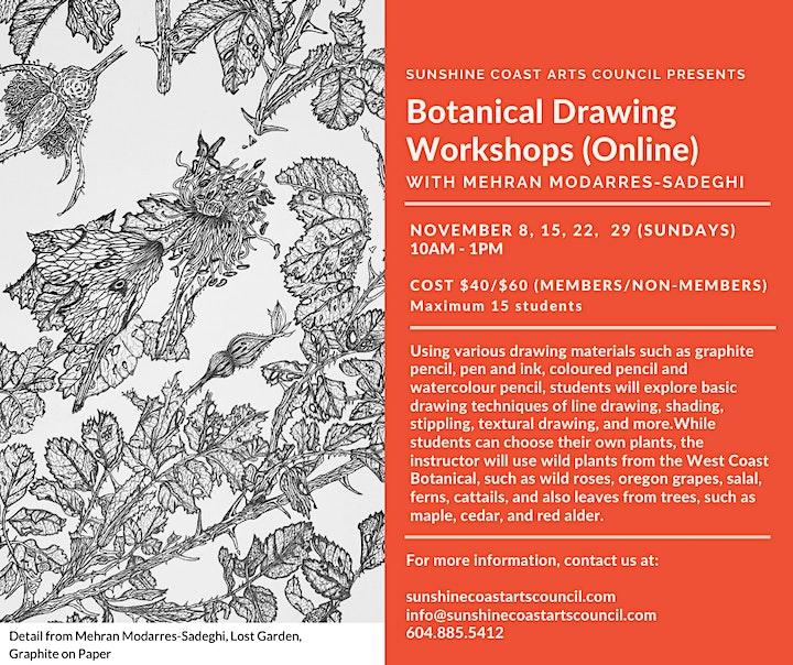 Botanical Drawing Workshops with Mehran Modarres-Sadeghi (Online) image