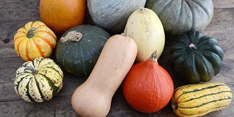 Lunch and Learn (Pumpkin and Winter Squash) tickets