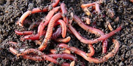 Worms at Work! Virtual Vermicompost Workshop tickets