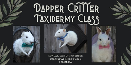 Dapper Critters Taxidermy Class tickets